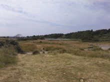 Abandoned Golf Course, The Duver Isle of Wight