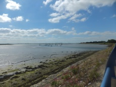 Langstone Harbour featured in the DI Andy Horton novels